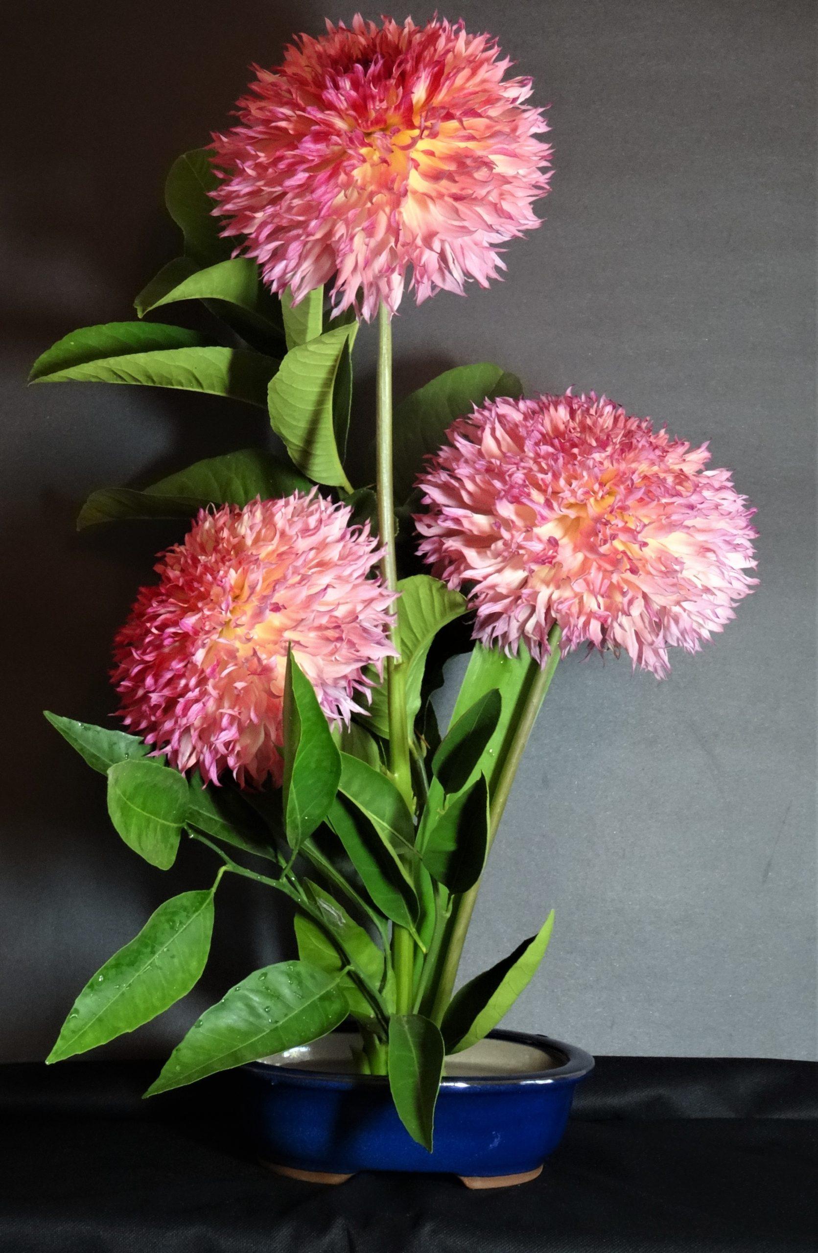 9901-Lakeview Peach Fuzz Bouquet-Diane Bond-Bond Nutter